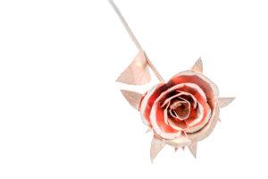 Roos-enkel